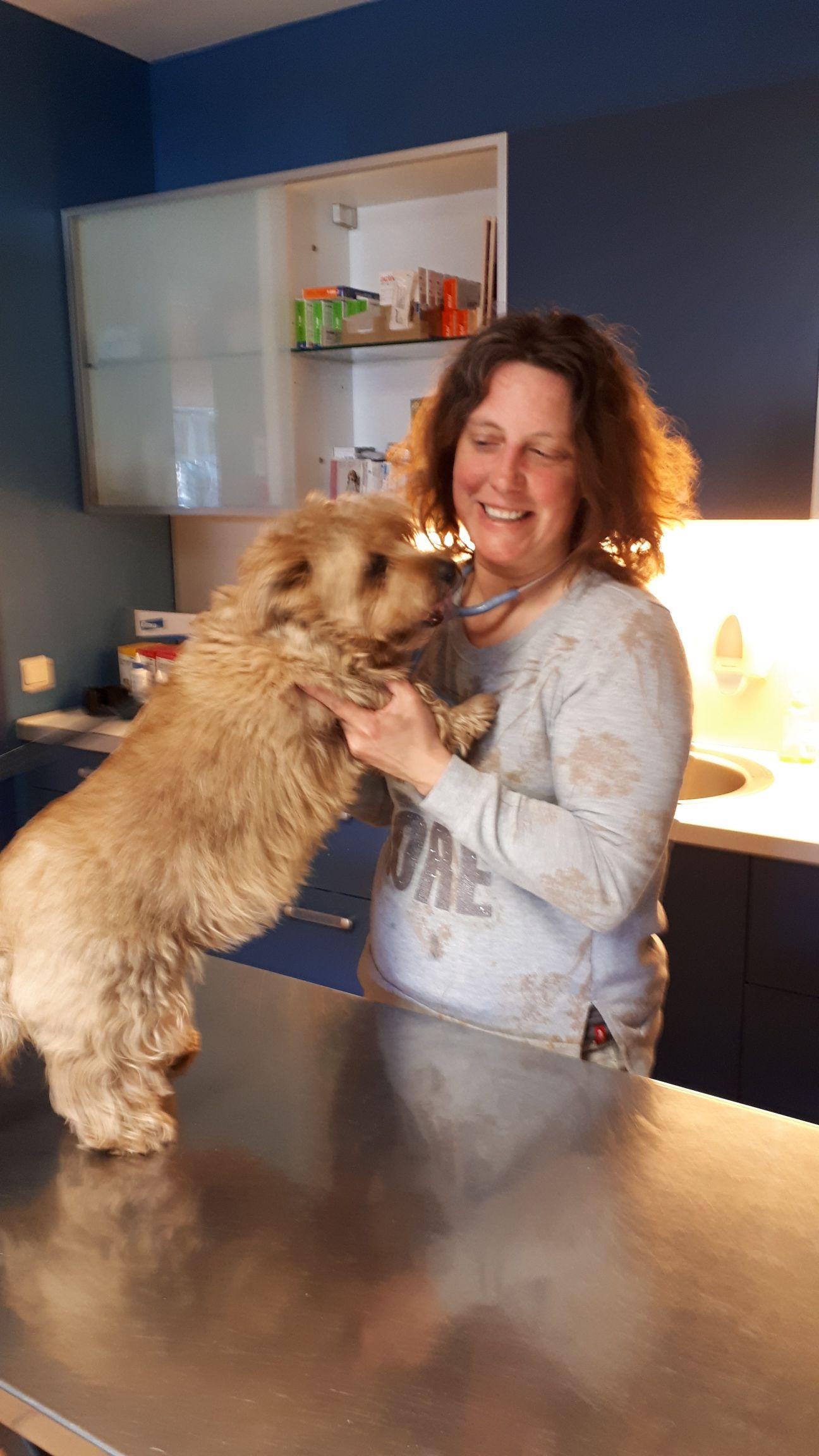 veterinaire-galerie-belgique (13)